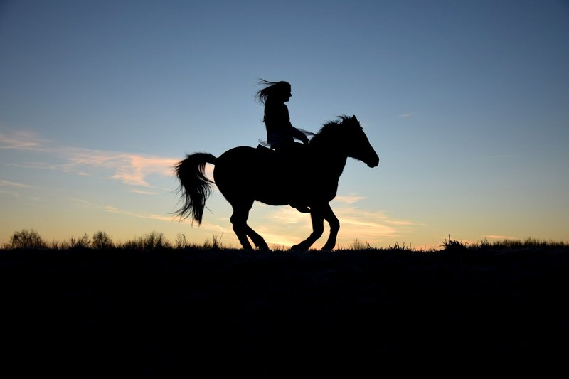 horse_riding_silhouette.width-800