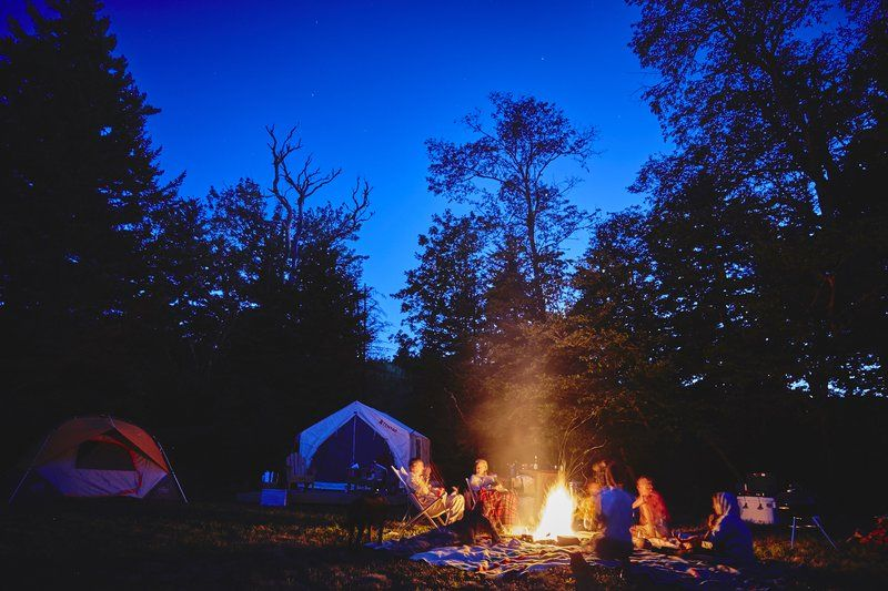 Best Games to Play While Camping