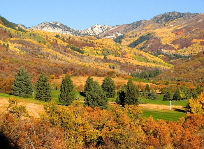 Wasatch Mountain State Park, Utah - Tentrr