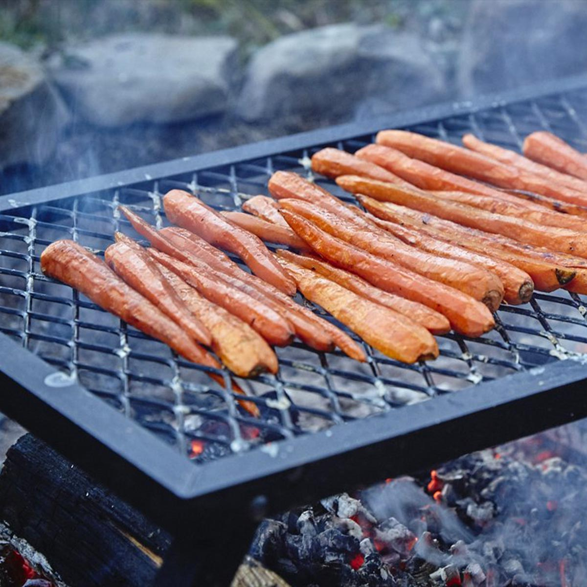 Campfire Cookin' For Kids