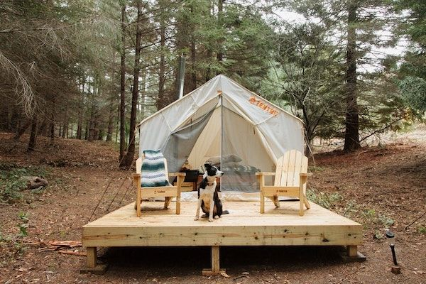 Glamping in California at The Artemis Campsite