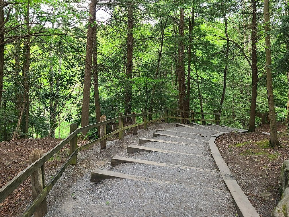 One of many structured hiking trails along Blackwater Falls.