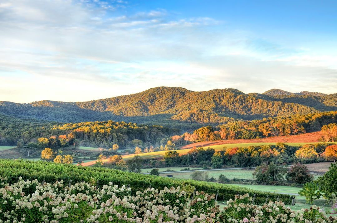 Virginia Glamping at Its Very Best—5 of Our Favorite Campsites