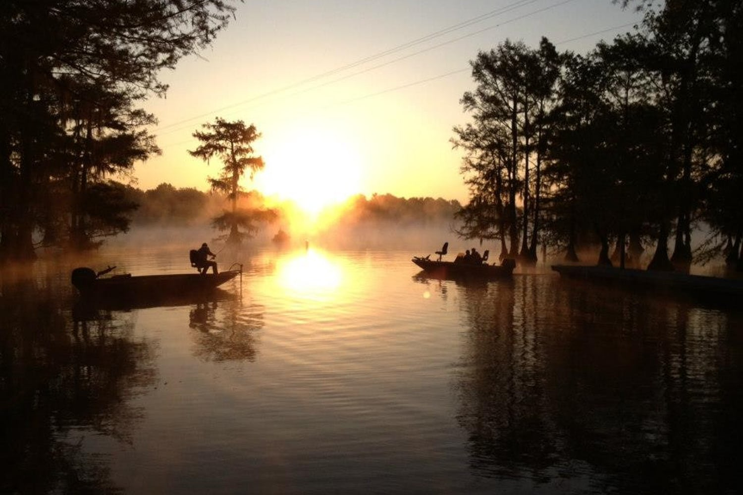 Enjoy the Bayou State at These 4 Campgrounds in Louisiana