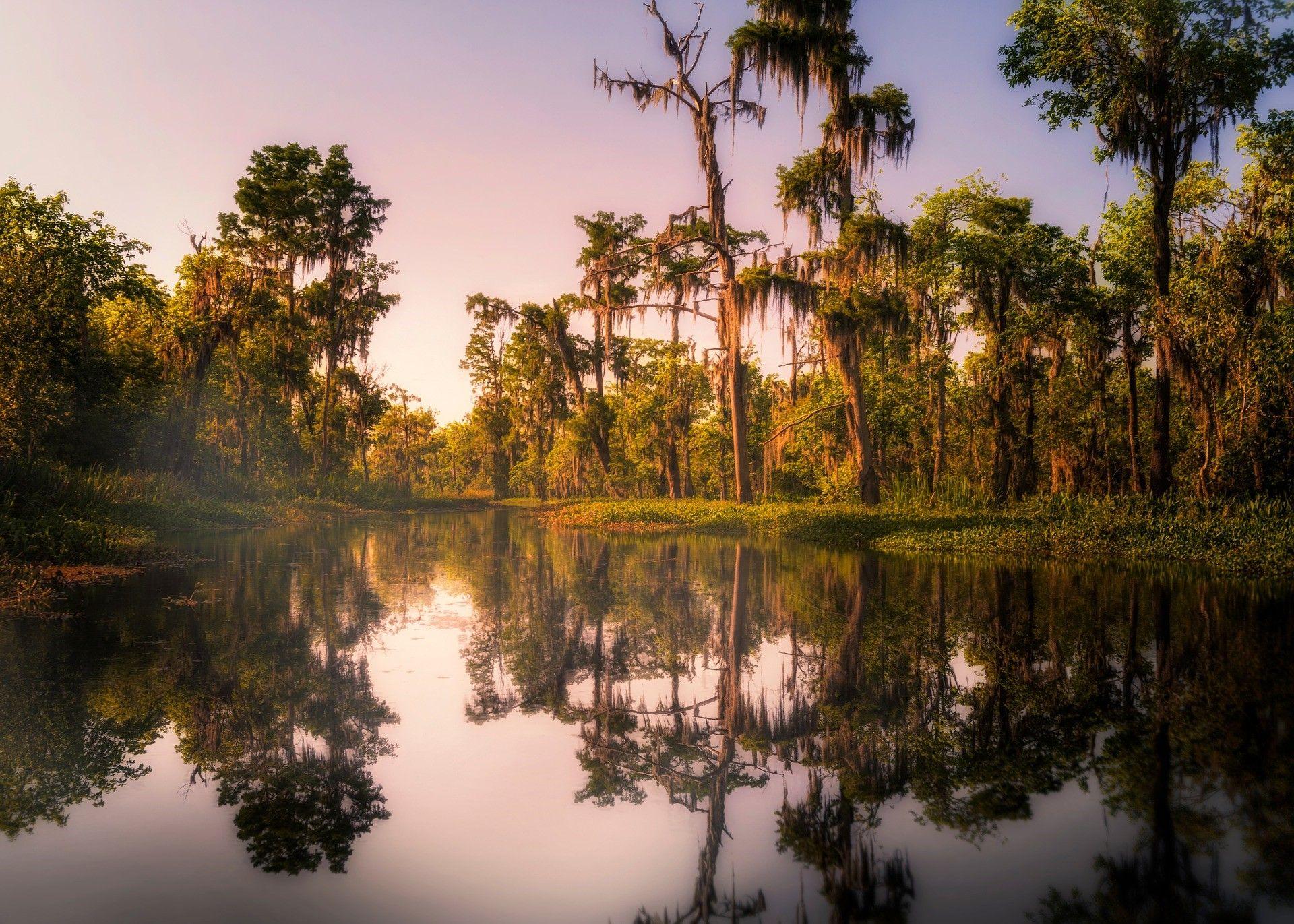 The Complete Louisiana Beach Camping Checklist