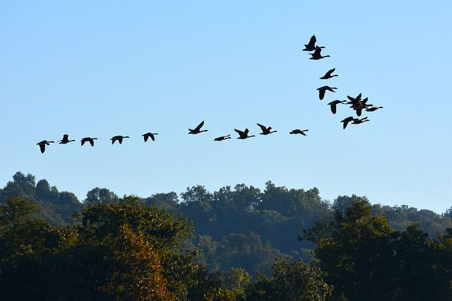 7 Reasons to Make Susquehanna River Your Next Camping Destination