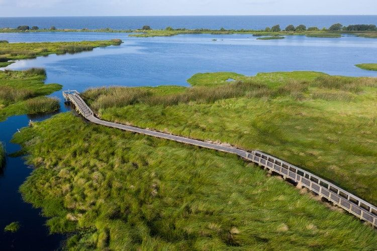 The 6 Best Hiking Trails in Louisiana