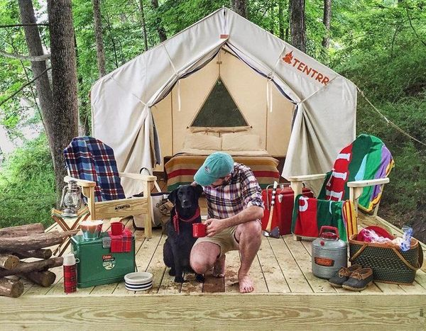 Camping With Dogs: Tips, Packing, Activities